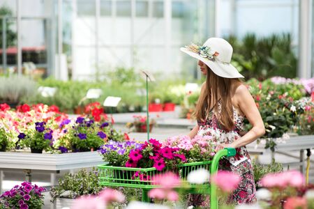 Stylish girl in hat and dress shopping in greenhouse while pushing green cart filled with purple and pink flowers Stockfoto