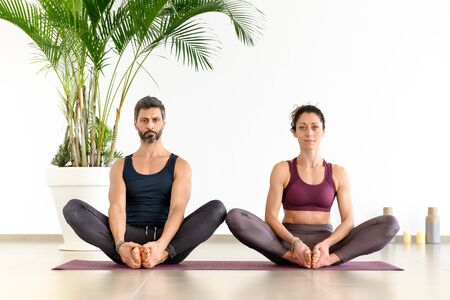 Front portrait of a man and woman during duo yoga meditation exercise indoors, sitting on mat indoors against white wall and green palm plant and looking at camera Banco de Imagens