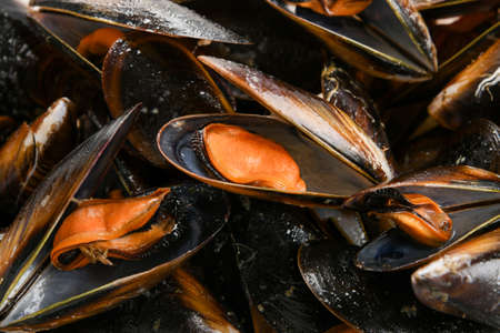 Background texture of cooked fresh marine mussels with focus to an open shell in the centre displaying the shellfish inside