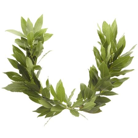 pager: laurel wreath