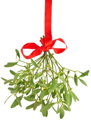 with mistletoe: Mistletoe with red ribbon isolated