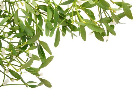 Mistletoe frame isolated Stock Photo