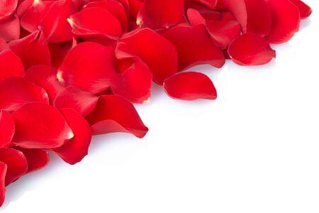 rubies: Red rose petals border Stock Photo