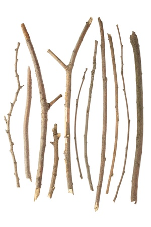 twig: Sticks and twigs isolated on white