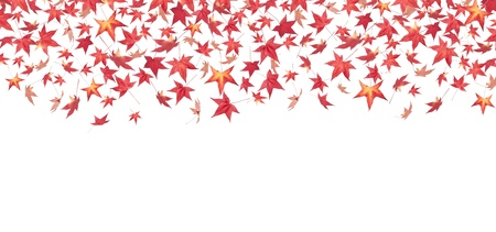 Falling red autumn leaves isolated on white photo