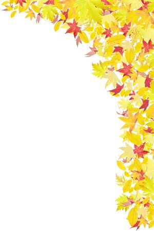 Falling autumn leaves frame isolated on white photo