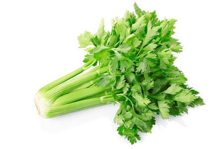 Green celery isolated on white background.