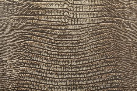 eidechse: Reptilleder Hintergrund