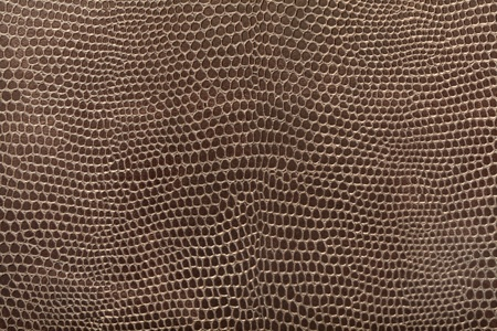 Reptile leather texture background photo