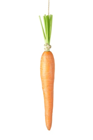 dangling: Carrot dangling isolated on white Stock Photo