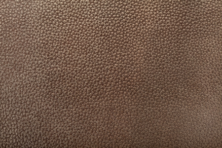 snakeskin: Dark brown leather texture background
