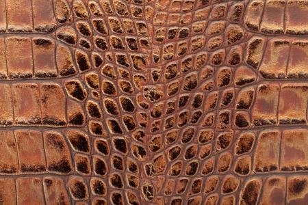 snakeskin: Crocodile leather texture background Stock Photo