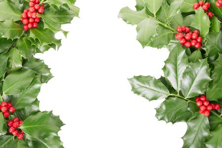 Holly border, Christmas decoration on white photo