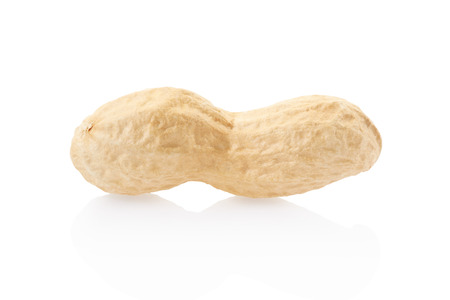 Peanut single, clipping path included photo