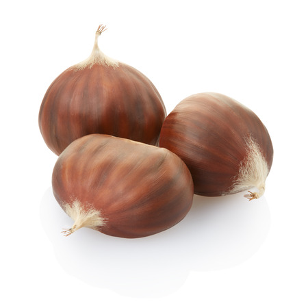 Chestnuts group isolated photo