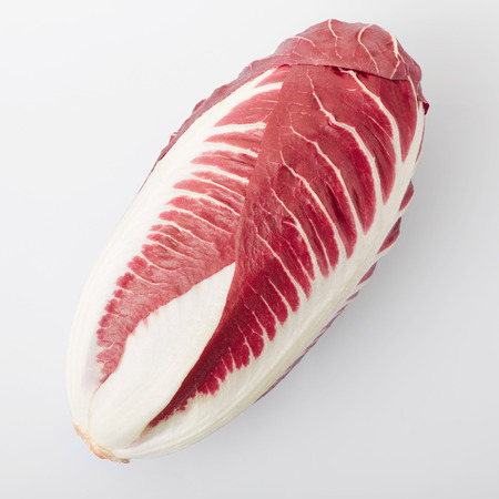 treviso: Radicchio, red salad on white, clipping path