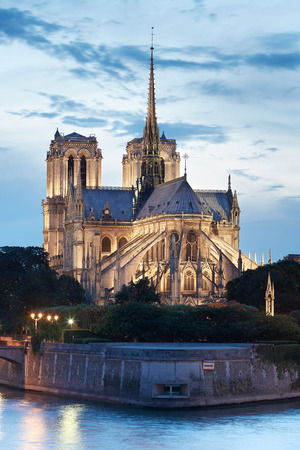 dame: Notre Dame de Paris at night, France Stock Photo