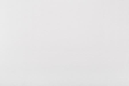 textura pelo: Fondo blanco de la lona, ??textura de pintor Foto de archivo