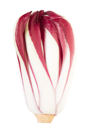 radicchio: Radicchio, red Treviso chicory on white.