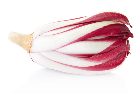 treviso: Radicchio, red Treviso chicory on white, clipping path