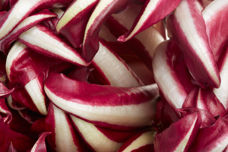 treviso: Radicchio, red Treviso chicory leaves background