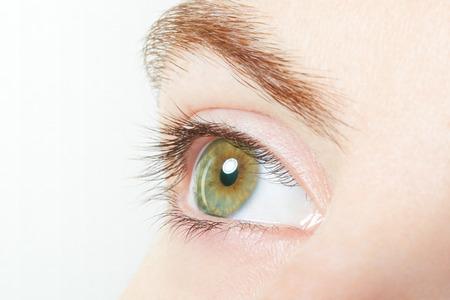 ojo humano: Macro sano verde Ojo humano con el fondo blanco Foto de archivo