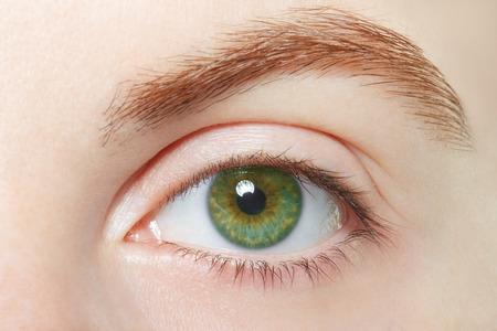 Human green healthy eye macro