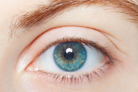 Human blue healthy eye macro