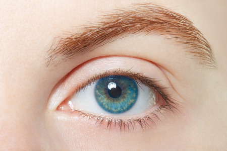 ojo: Humano, azul macro ojo sano, el concepto de la visión Foto de archivo