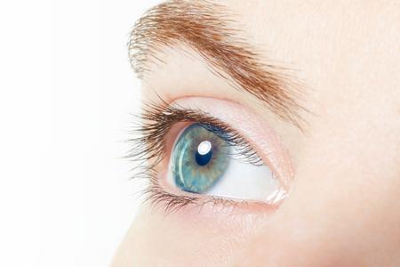 ojos azules: , Azul macro ojo sano humano en blanco