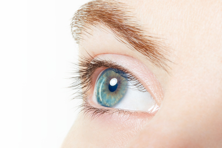 Human, blue healthy eye macro on white