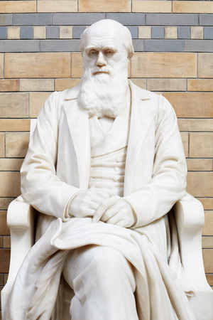 charles: Charles Darwin white marble statue Editorial