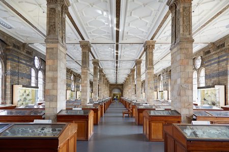 mineralogy: Natural History Museum interior, mineralogy collections in London