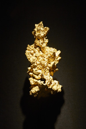natural history museum: The Latrobe gold nugget on display in The vault in Natural History Museum in London Editorial