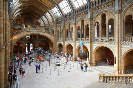 british english: Natural History Museum interior with people and tourists in London