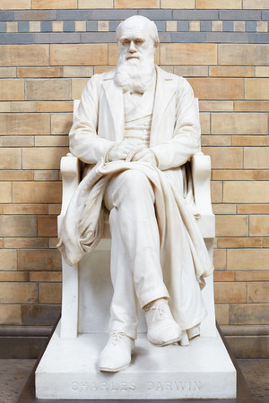 evolutionary: Charles Darwin white marble statue in Natural History Museum in London Editorial