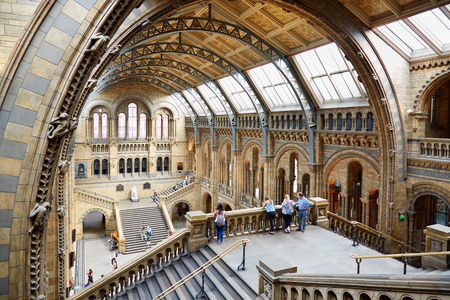 natural history museum: Natural History Museum interior arcade with people and tourists in London Editorial