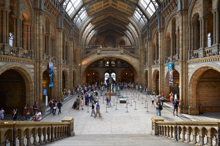 natural history museum: Natural History Museum interior with people and tourists in London