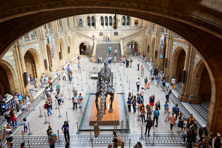 the british museum: Natural History Museum interior with people and dinosaur skeleton in London Editorial