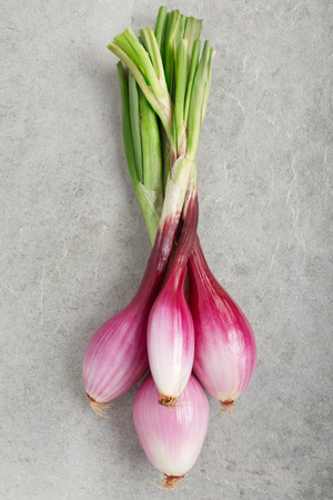 onion: Red onions bunch, Tropea type, on gray stone background Stock Photo