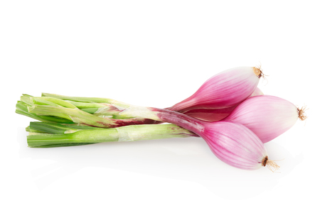 bulb and stem vegetables: Red onions bunch, Tropea type on white, clipping path