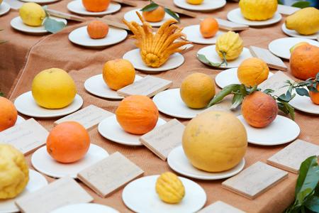 Different types of citrus fruits at spring fair Banco de Imagens