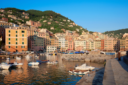 genoa: Camogli typical village with colorful houses and small harbor bay in Italy, Liguria in a sunny day