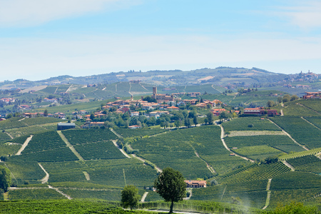 Serralunga dAlba town with castle and vineyards in Italy
