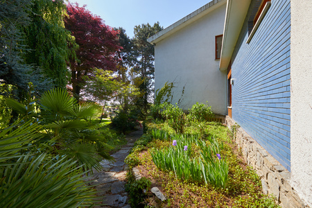 Garden and villa with stone tiled path and plants in a sunny summer day, Italy Imagens