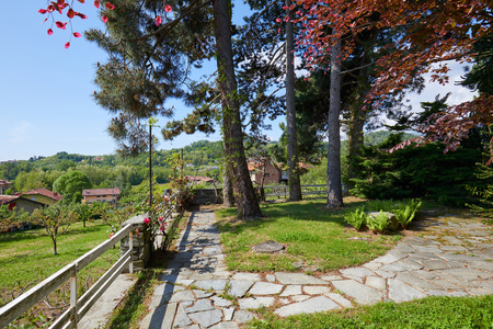 Garden with pine trees and stone tiled path in a sunny summer day, Italy