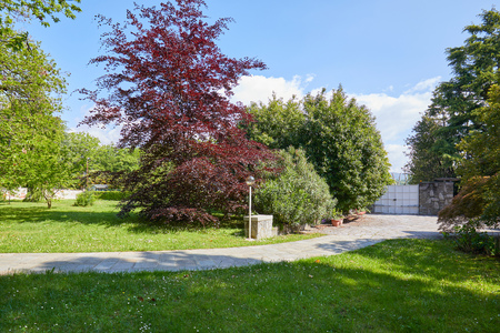 Garden with green meadow, red beech tree and stone tiled path in a sunny summer day, Italy Imagens