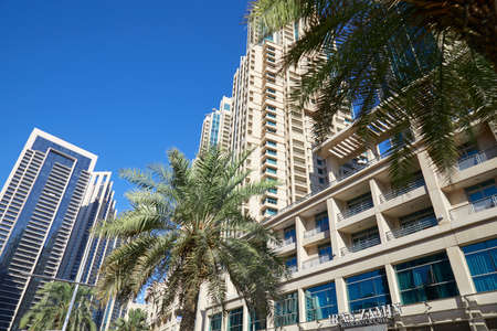 DUBAI, UNITED ARAB EMIRATES - NOVEMBER 22, 2019: Modern skyscrapers in Dubai downtown with palm trees, low angle view in a sunny day Sajtókép
