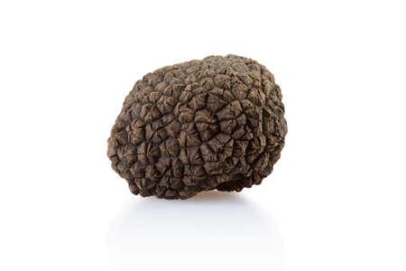 Single black truffle isolated on white