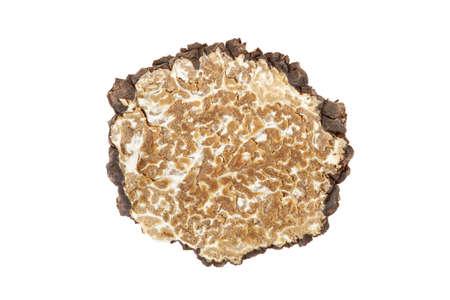 Black truffles slice isolated on white